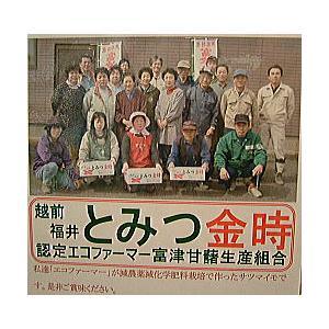 さつまいも 福井県産 サツマイモ とみつ金時 お試し 1kg さつま芋 薩摩芋  昔ながらの ほのかな甘味とふっくら食感が特徴です|meisankobo|05
