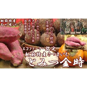 さつまいも 福井県産 サツマイモ とみつ金時 お試し 1kg さつま芋 薩摩芋  昔ながらの ほのかな甘味とふっくら食感が特徴です|meisankobo|06