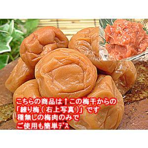 梅干し わけあり品をねり梅にして 練り梅(梅肉)200g入 福井県産特産品 梅干 訳あり品を使用 昔ながらの梅干し 塩漬けでしょっぱいねり梅 meisankobo