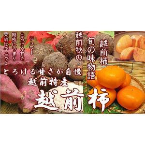 お試し品 越前柿 1kg 旬の味覚フルーツ meisankobo 02