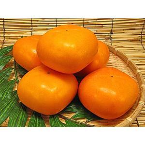 ジューシーフルーツ越前柿 3.5kg 旬の味覚フルーツ|meisankobo