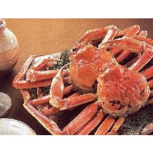 セイコガニ せいこかに 2杯入り Mサイズ 冷凍品 呼称はセコガニ 香箱蟹 せこがに 親がに せこ蟹 メスガニ こうばこがに 香箱ガニ セコカニ メガニ|meisankobo