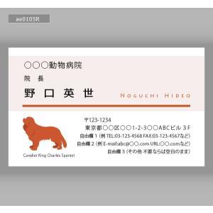 動物カラー名刺(100枚送料込み)ae0105|meishidas