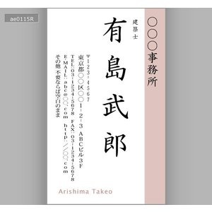 カラー名刺(100枚送料込み)ae0115|meishidas