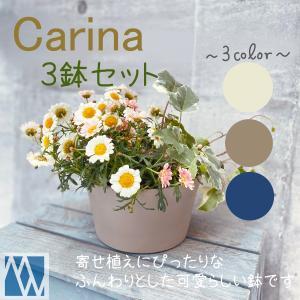 Carina Pot|meiwaco