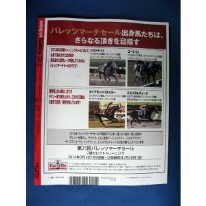 【永久保存版】Gallop2013 週刊ギャロップ臨時増刊|meiwasyobou|02