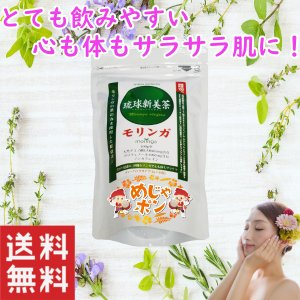 モリンガ茶 沖縄 お土産 琉球新美茶 モリンガ60g(2g×30包入)×1個 アクアグリーン