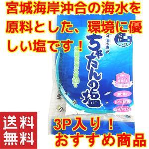 食品 お試し 塩 沖縄 北谷の塩 5g×3個セット お土産