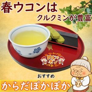 沖縄 ティーパック 健康茶 比嘉製茶 春ウコン茶ティーパック2g単品2個セット|mejapon
