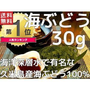 海ぶどう プチプチ 沖縄県久米島産海ぶどう(30g)お土産 ...