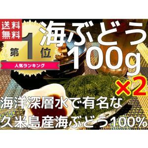 海ぶどう 沖縄 久米島産海ぶどう(100g)×2個セット 海...