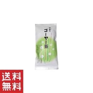 ゴーヤ茶 種入り 沖縄産 ゴーヤ ゴーヤー茶20g袋入×1個 仲善 健康茶|mejapon