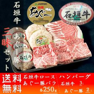 牛肉 ステーキ ギフト 石垣牛 あぐー豚 三昧セット お取り寄せ お土産 ja沖縄 いしがきビーフ本舗 送料無料 おすすめ|mejapon