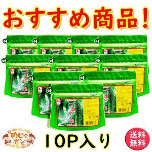 ゴーヤ茶 ゴーヤ 沖縄県産健康茶種入りゴーヤー茶 ティーパック 15g(1.5g×10包入)×10個セット お土産 おすすめ|mejapon