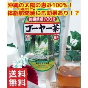 沖縄県産健康茶 種入り ゴーヤー茶ティーパック45g(1.5g×30包入)