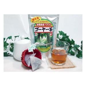 ゴーヤ茶  沖縄 ティーバッグ 沖縄県産健康茶種入りゴーヤー茶 ティーパック 45g(1.5g×30包入)×10個セット お土産 国産 おすすめ|mejapon