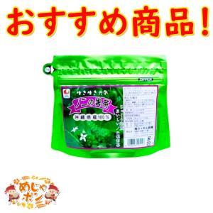 沖縄県産健康茶 ノニの実茶 ティーパック30g(3g×10包入)