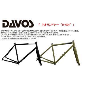 ★フカヤ DAVOS ネオランドナーフレームセット★