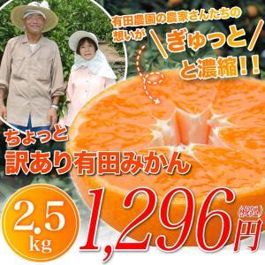 みかん ちょっと 訳あり 有田みかん 蜜柑 2.5kg 自宅用 訳アリ  ミカン 2.5kg 産地直送 箱買い 産地直送 安い 糖度