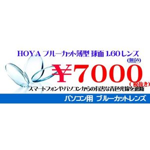 HOYA ブルーカット 薄型 球面1.60レンズ UV、超撥水加工付|melook