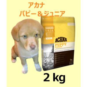 「アカナ パピー&ジュニア 2kg」小型〜中型犬の小犬に|meltinpot