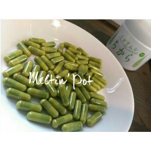 ミドリムシのちから 100粒 人間用 今注目の健康成分ユーグレナ( ミドリムシ )サプリメント|meltinpot