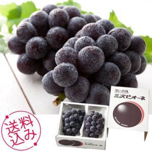 お中元 ギフト 果物 広島三次ピオーネ 送料無料 内祝い お祝い 誕生祝 御礼 70037|meme