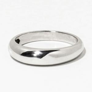 メモリアルリング LJR01 [Pt900] 完全防水樹脂埋封ジュエリー プラチナ製