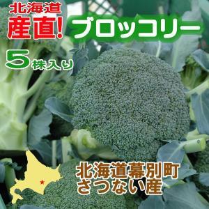 北海道産 ブロッコリー5株入り 産直 十勝産 ブロッコリー 旬の野菜 お中元  ギフト