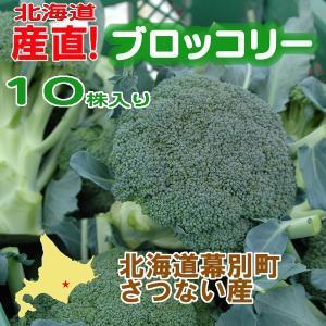北海道産 ブロッコリー10株入り 産直 十勝産 ブロッコリー 旬の野菜 お中元  ギフト