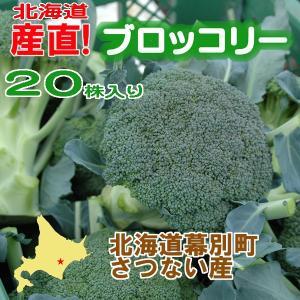 北海道産 ブロッコリー20株入り 産直 十勝産 ブロッコリー 旬の野菜 お中元  ギフト