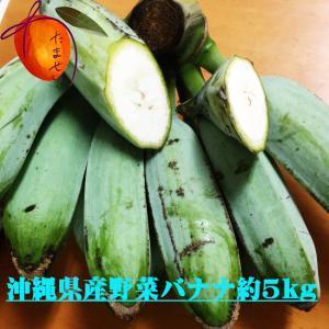 野菜バナナ約 5kg ★天ぷらでも美味しい★沖縄バナナ