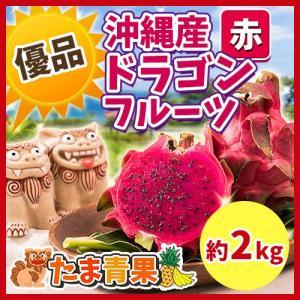 【発送7月下旬〜12月】  沖縄県産 ピタヤ ドラゴンフルーツ 【優品】 約2kg