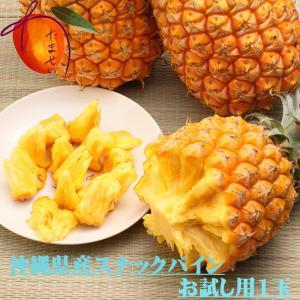 沖縄産スナックパイン小玉お試し用1玉 約500g【発送5〜9月】