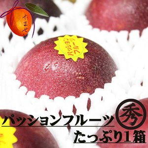 【発送2〜7月】  沖縄県産 パッションフルーツ(家庭用バラ)約1kg  (スムージー ヨーグルト)