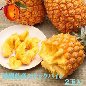 沖縄県産スナックパイン大玉約2〜3玉(約 2.5〜3kg)【発送4〜9月】
