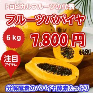 沖縄県産 フルーツパパイヤ約6kg  【発送年中・台風などで在庫切れ有ります】 【品種お任せ】  最強のダイエットフルーツ