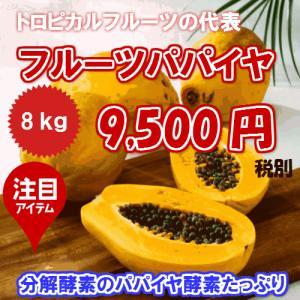 沖縄県産 フルーツパパイヤ約8kg  【発送年中・台風などで在庫切れ有ります】 【品種お任せ】  最強のダイエットフルーツ