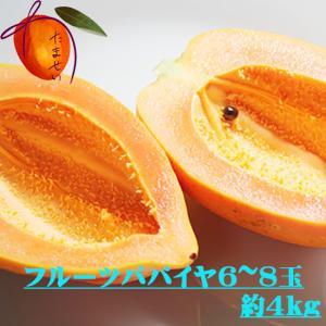 【発送8月〜12月】 沖縄県産 フルーツパパイヤ 約4kg(4個前後) 【品種石垣サンゴ】  最強のダイエットフルーツとも言われるフルーツパパイヤ