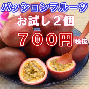 【優品】沖縄県産 パッションフルーツ 2個 【発送2〜7月】  (スムージー ヨーグルト)