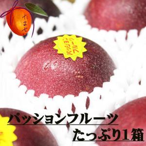 【優品】沖縄県産パッションフルーツ(数量限定)1箱 8〜12玉