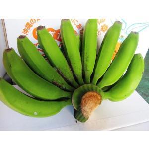 【発送7〜10月】沖縄の三尺バナナ約 5kg