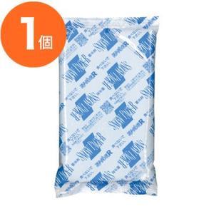保冷バッグ・保冷/保温剤 / スノーパック R−30 300g