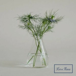リューズガラス フラワーベース フラワーベース パフィ Horn Please 志成販売 372052 フラワーベース 木 花 フラワー フラワーグラス 花瓶 ガラス|merci-p