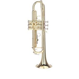 ammoon 初心者入門5点セット Bb B フラット トランペット 黄銅製 吹奏 金管楽器 (1)|merciteam