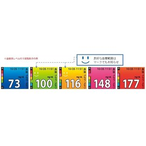 メディセーフフィット スマイル MS-FR501W 本体のみ テルモ 血糖値測定器【条件付返品可】|merecare|02