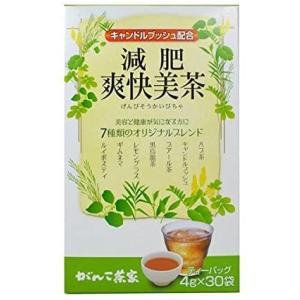 がんこ茶家 減肥爽快美茶 30袋 × 3個セット (3個)|merock