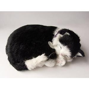 パーフェクトペット スヤスヤ息をしてるようにお腹が動くぬいぐるみ 白黒猫 小 merock