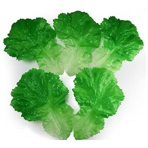 GuCra 野菜模型 レタス 青菜 5枚パック 食品サンプル|merock