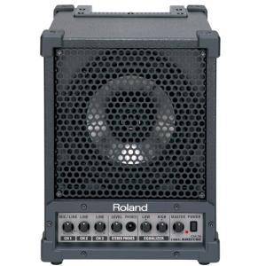 Roland コンパクト・モニターアンプ CM-30 : ローランド Cube Monitor CM30|merry-net